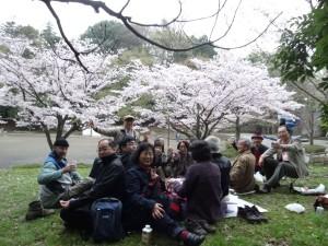 お花見 2015 町田芹ヶ谷公園